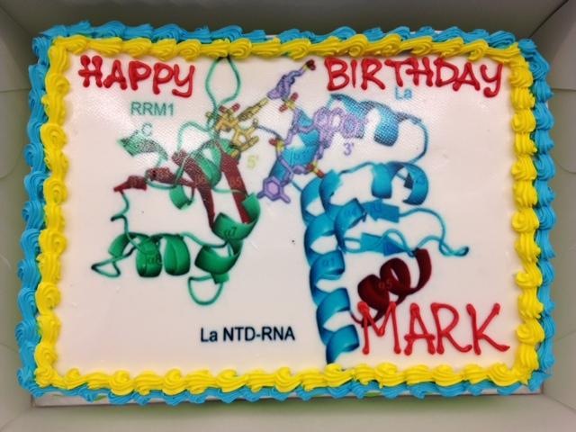 My Awesome Birthday Cake Bayfield Lab